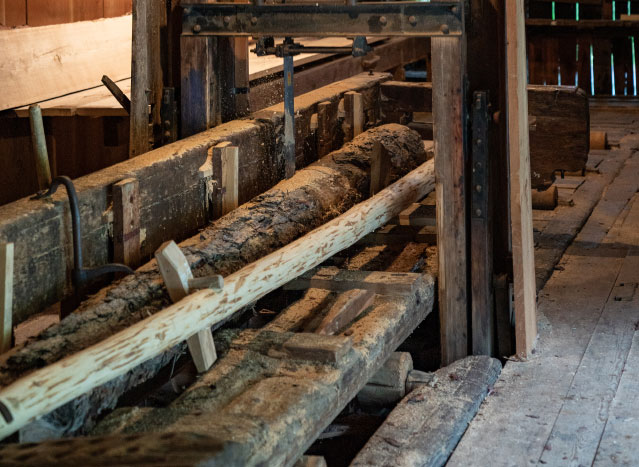 Säge beim Holzschneiden